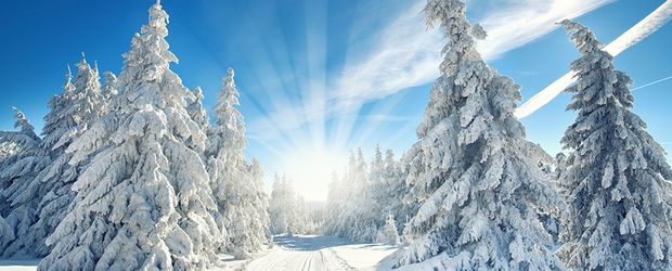 Winterlandschaft © Jenny Sturm - stock.adobe.com